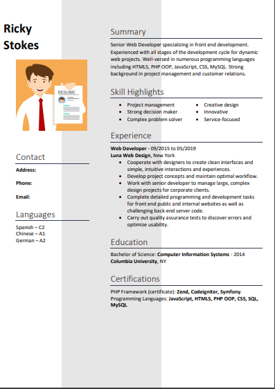 professional experience resume