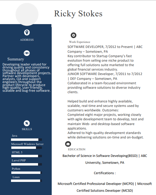 Best Software Developer Resume Format with Eye-Catching Examples