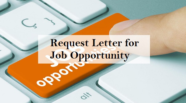 request letter for job opportunity